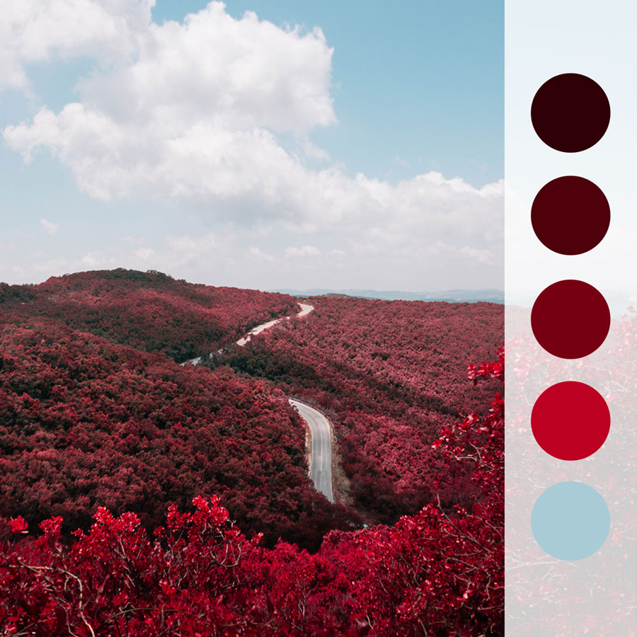 0209_Crimson-Forests.jpg