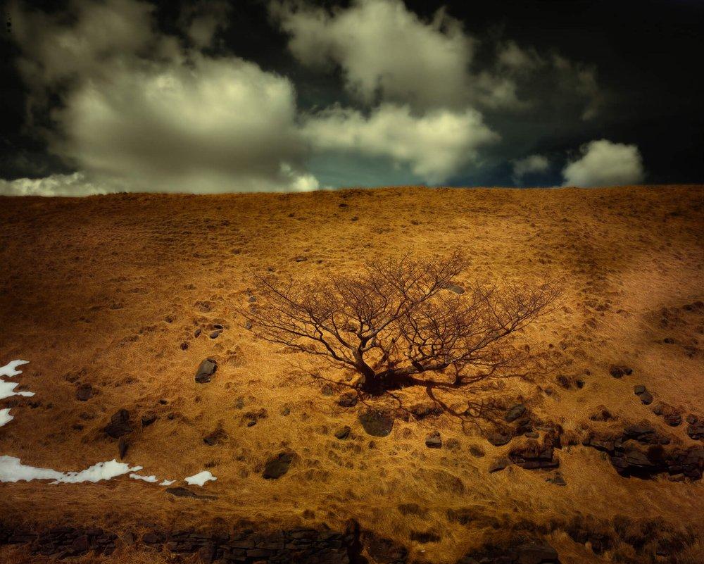 'Greenfield Brook, Saddleworth Moor' by Matthew Murray