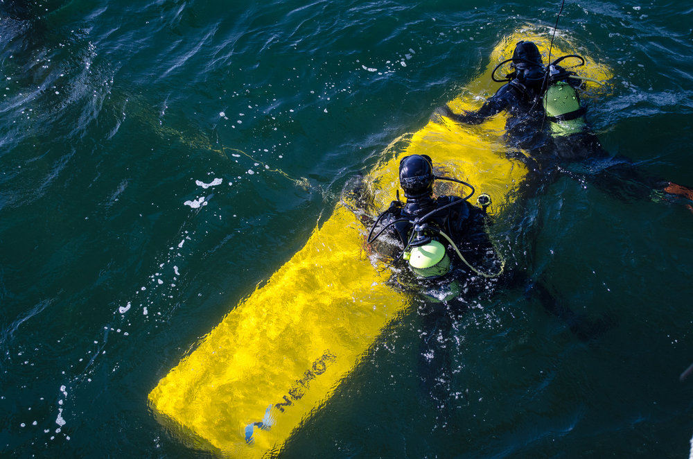 NEMOS Divers During Service Operations