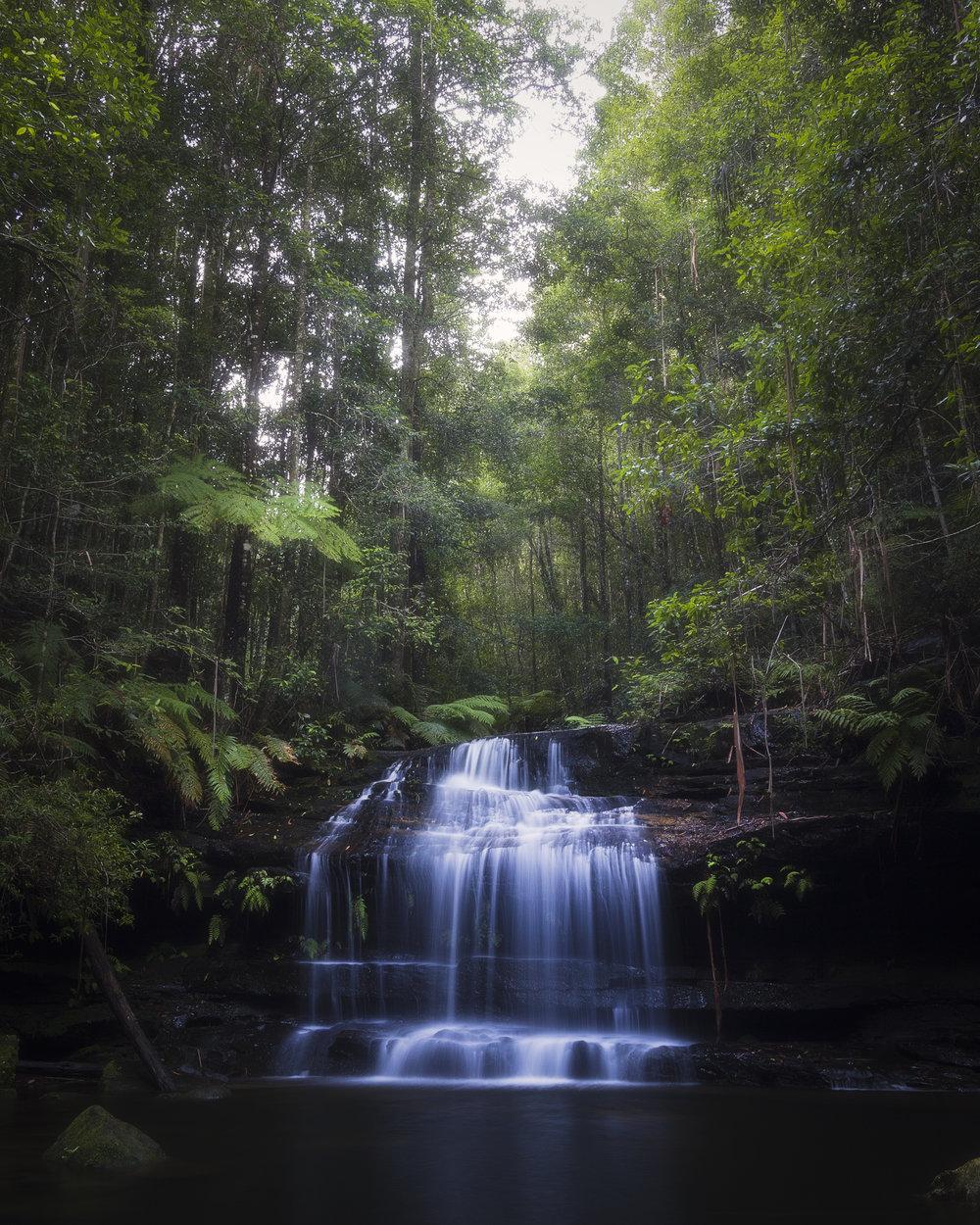Forest Falls.jpg
