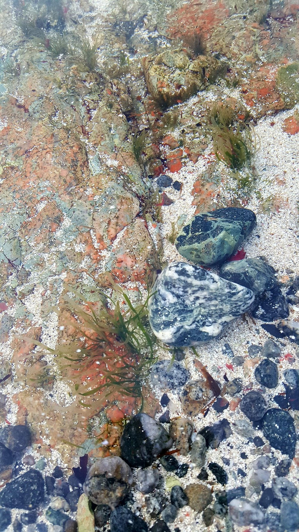 Colourful Stones of Barra