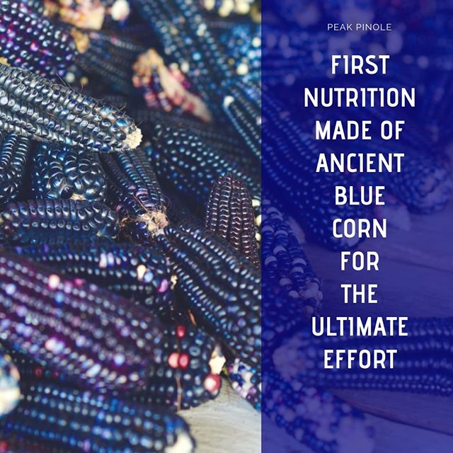 We have the very first nutrition made of ancient heritage seeds, @bluecorn, and Aztec pinole!  This is the #superfuel that you have been looking for. It's #vegan, #glutenfree, #sugarfree. And extremely tasty!  Coming soon!  @azurefood  #continuethelegacy @bluepinole #bluecorn #running #trail #Tarahumara. #trailrunning #energy #food #future #seeds