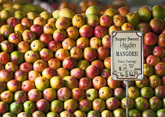 March 5th, 2019: HAPPY TREE 0 FIVE DAY! Took you long enough to get it. What's your favorite fruit grown in soflo? Ours has to be mangos cause your mango me crazy.
