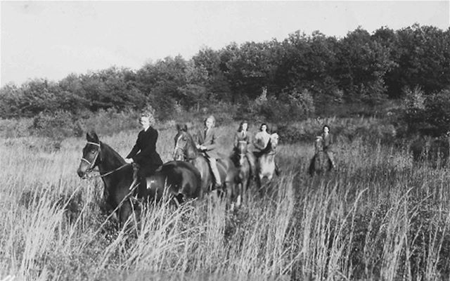 Is there anything better than a fall day in Florida? It's one of our favorite times of year to get outside and enjoy the wild and wonder of the Florida landscape. Much like this group of Lake Mary-ians, enjoying a cool ride through tall Florida grass fields in the early 20th century.