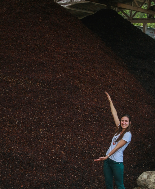 Piles like this are not a rare sight in coffee-growing regions around the world. Over 20 million TONS of coffee fruit are wasted every year.