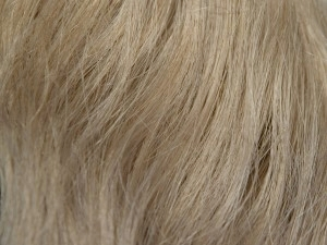 Ash Light Blonde #10