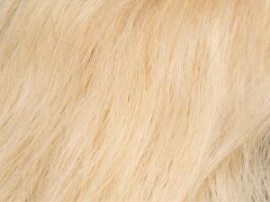 Light Blonde #22