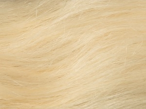Lightest Blonde #60