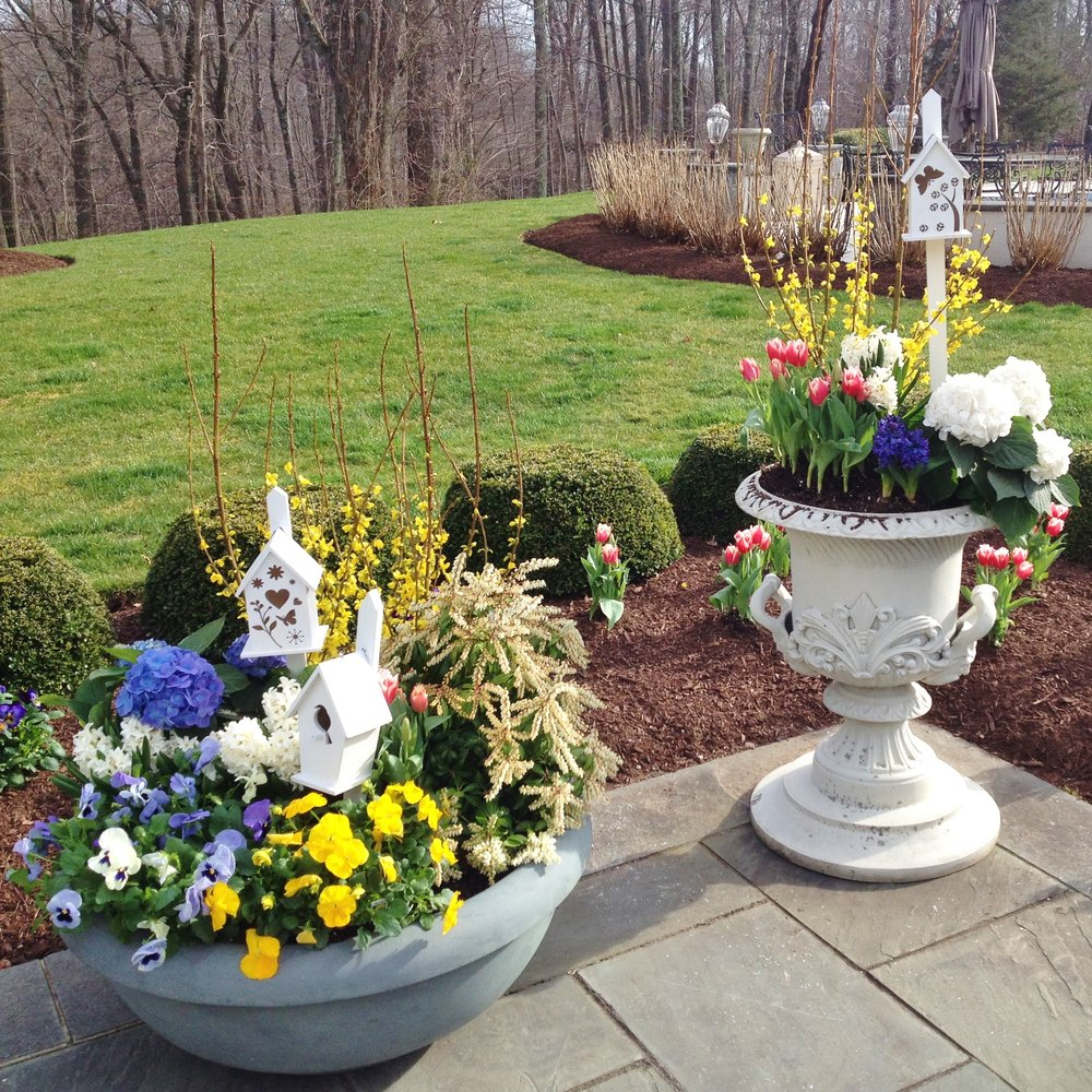 Seasonal Containers by Southgate Nurserymen