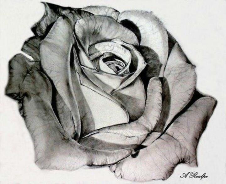 b5b891149ba89d32ebb0f15e371142ff--beautiful-roses-beautiful-tattoos.jpg