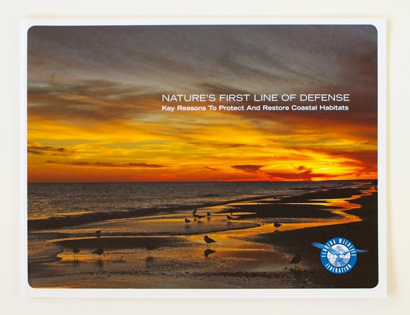 CLIENT:  Florida Wildlife Federation   Nature's First Line of Defense  is a booklet designed for the Florida Wildlife Federation to inform Florida lawmakers and the public about the value coastal habitats provide in protecting Florida communities and wildlife from storms and sea level rise.