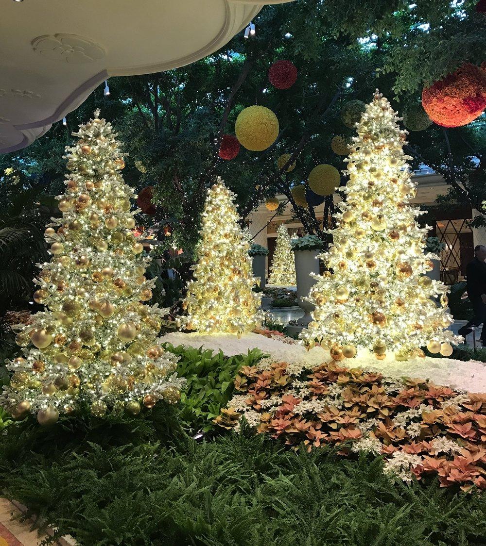 wynn christmas 2.JPG