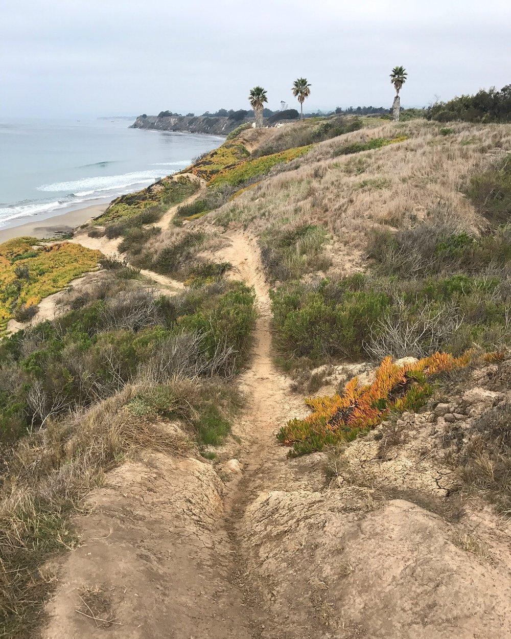 Ellwood Beach trail