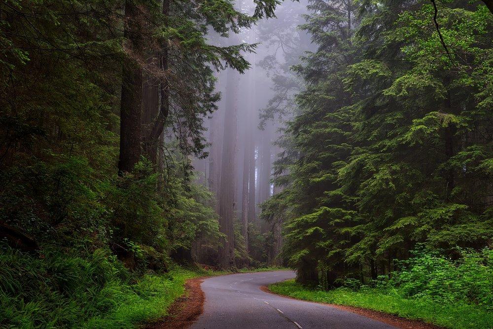 all roads doula