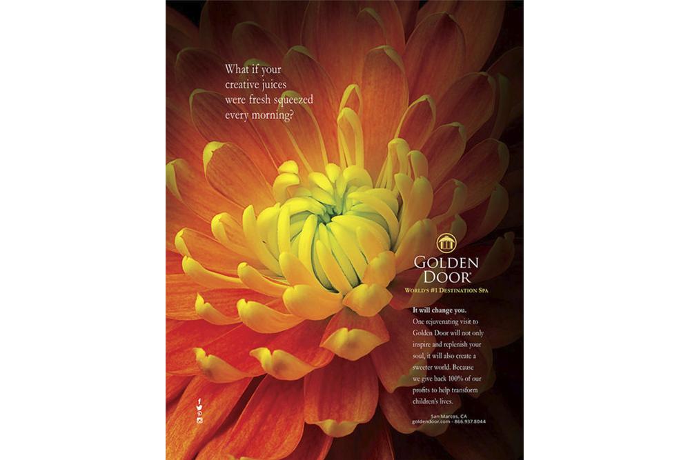 Flower Ad.jpg