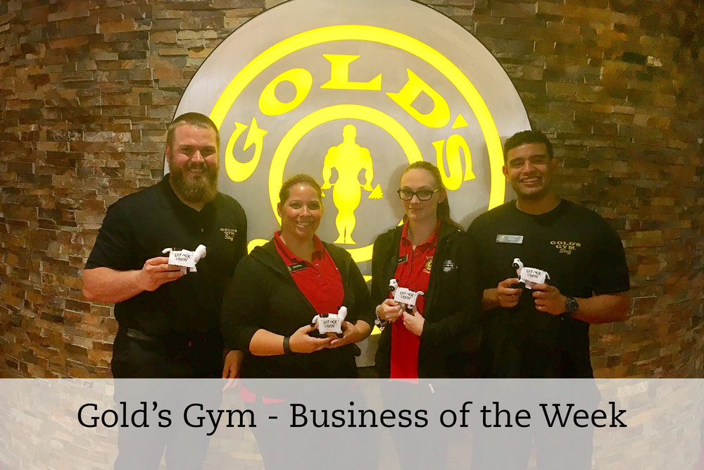 Golds Gym - BOTW.jpg