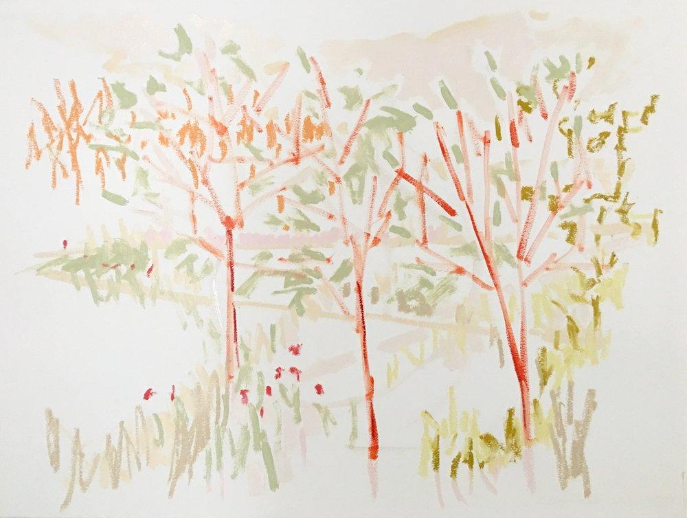 Three Trees, 23x30