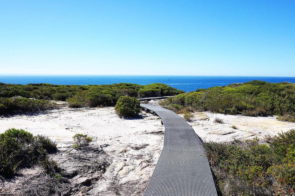 Hiking the Royal National Park Coast Track Path