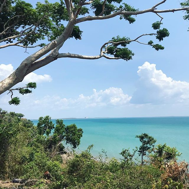 Darwin 🐊 #darwin #australia #happy #happyvibes #nature #blue #northernterritory #wayakena #ocean #crocs #beach #eucalyptus #colourful #sky #clouds #travel #mytinyatlas #flashesofdelight #design #homedecor #interiordesign #architect #landscape #landscapephotography #aussie #dream #green #doyoutravel #saraenick2018 #travelblogger