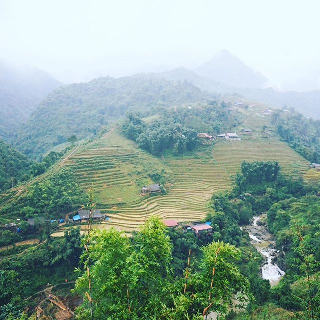 Sa Pa and its amazing landscape 🌿 #vietnam #sapa #asia #rice #landscape #landscapephotography #southeastasia #wayakena #adventure #saraenick2018 #green #nature #clouds #tribal #mytinyatlas #exploremore #outdoors #hiking #travelling #lonelyplanet #letsgosomewhere #dametraveler #welltravelled #traveler #travelstoke #stayandwander #travelawesome #theglobewanderer #roamtheplanet #bbctravel