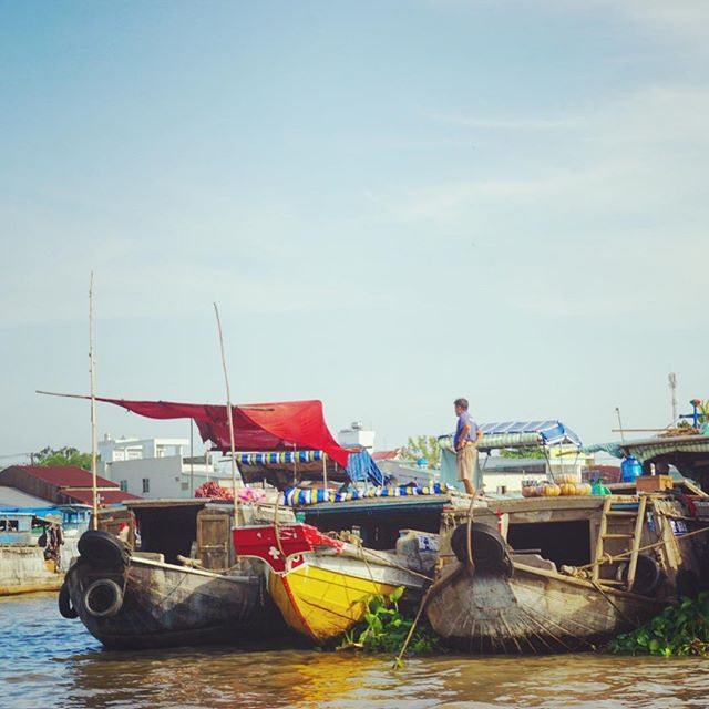 Floating market in Can Tho 🛶 #vietnam #mekong #market #saigon #boat #colourful #southeastasia #asia #wanderlust #pet #mytinyatlas #letsgosomewhere #dametraveler #welltravelled #travelstoke #stayandwander #travelawesome #theglobewanderer #lonelyplanet #roamtheplanet #exploremore #bbctravel #traveldeeper #exploringtheglobe #flashesofdelight #theoutbound #finditliveit #tasteintravel #theprettycities