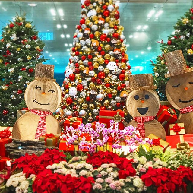 Happy Holidays little travellers! 🎄💕☃️ #xmas #natale #changiairport #singapore #asia #snowman #christmas #holiday #fun #travel #wanderlust #adventure #stayandwander #passionpassport #roamtheplanet #asian #wayakena #tree #plane #lonelyplanet #bbctravel #red #backpacking #freedom #viaggiare #southeastasia #mytinyatlas #theprettycities