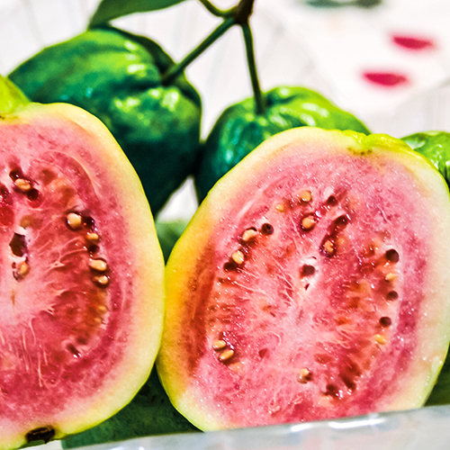 GUAVA     Psidium guajava fruit   Guava fruit extract contains Vitamins A, B and C, and helps to improve the texture of the skin.
