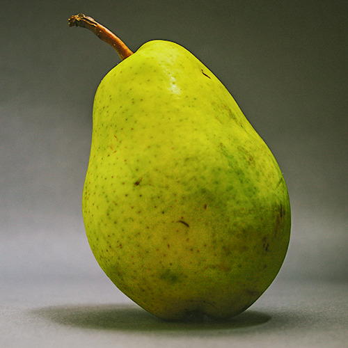 PEAR Pyrus communis Pear was first introduced to New Zealand in the early 1800's. It is protective and can help regulate the skin's pH balance. The fruit contains high amounts of vitamins and minerals.