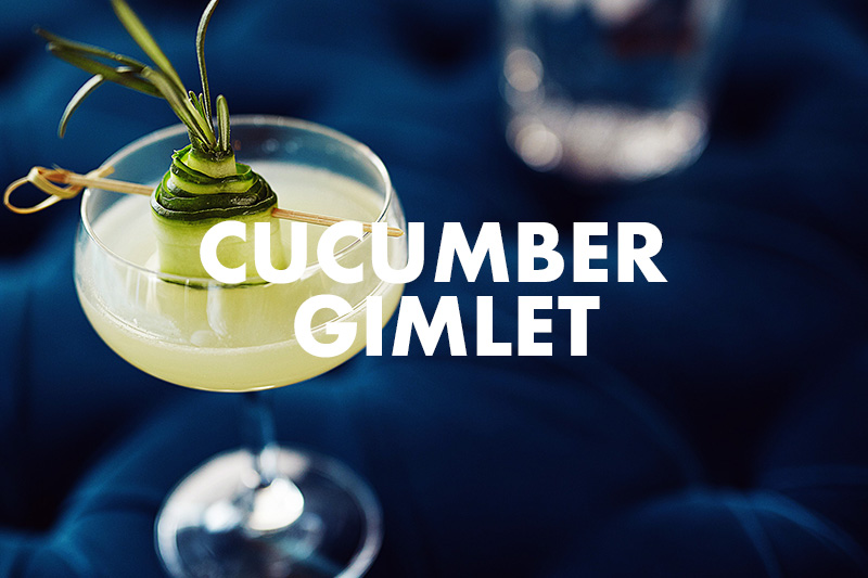 Cucumber Gimlet