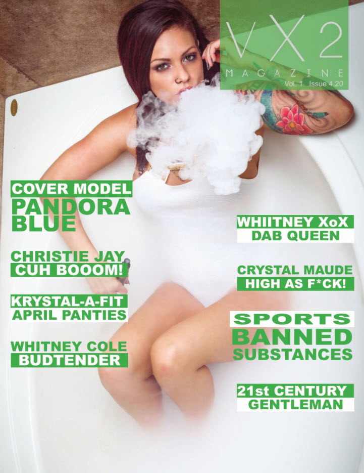 VX2 Magazine Vol. 1 issue 4.20