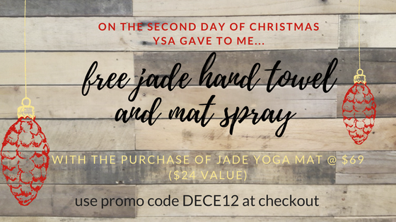 on the first day of christmas ysa gave to me... (1).png