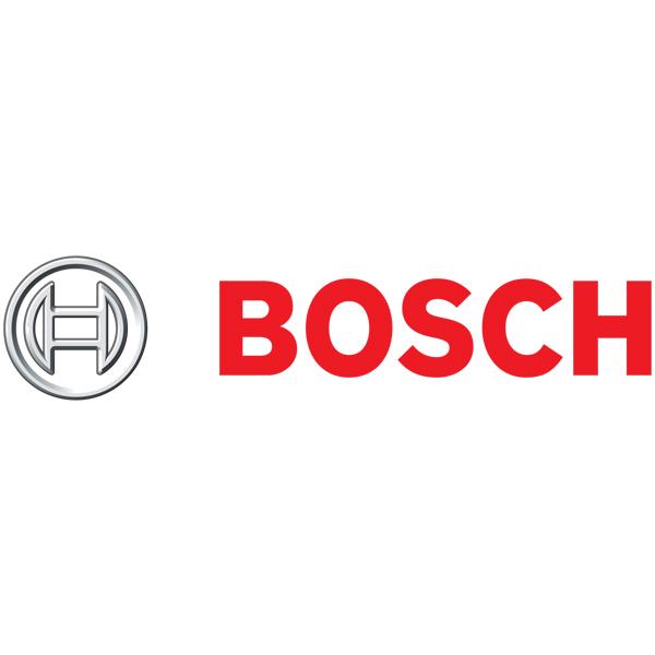 Bosch8.jpg