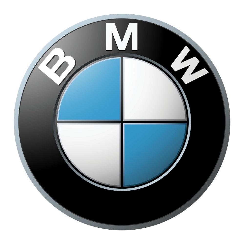 BMW LOGO .jpg