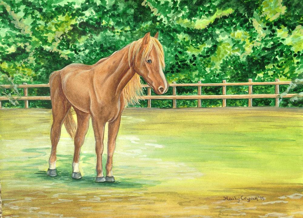 Jenportrait horse.jpg