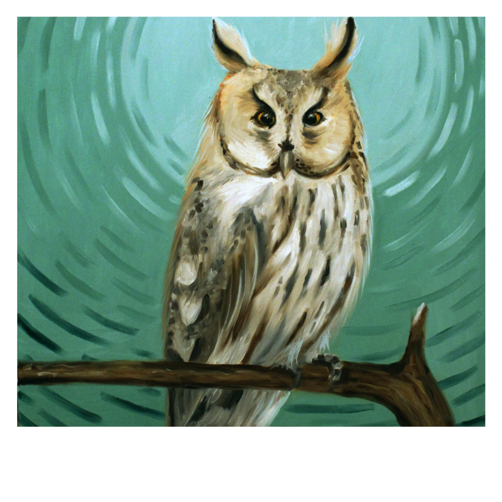 """Nico Cathcart - (@nicocathcart)'Long Eared Owl'Nico is a painter, sign maker, and muralist hailing from Toronto, Ontario, who strives to discuss Feminism, Minority Empowerment, and Conservation in her highly-colorful works. Currently creating and adventuring in southern wilds of Richmond, VA, she works with the themes of empowerment, and conservation often. Her work has been shown in many galleries and museums throughout the continent, and she is an active national-level muralist, with work in the Richmond Street Art Festival, the Richmond Tattoo and Arts Festival, as well as many businesses and restaurants throughout the Richmond Metro area. Nico most recently co-curated and painted in the exhibition """"Fresh Paint: Murals inspired by the story of Virginia"""", on display now through April 21st, 2019 at the Virginia Museum of History and Culture, and """"Glitter and Grit"""", a feminist exhibition at Gallery 5. Recently her work was featured in the book """"Murals of Richmond""""."""