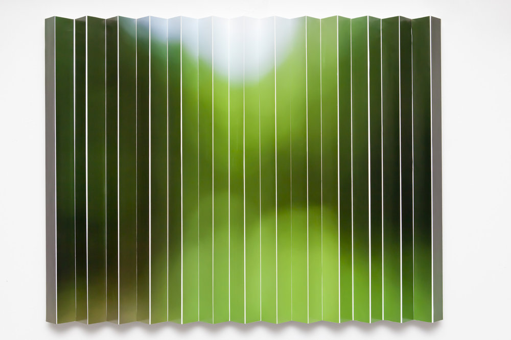 Edge_of-_Forest.jpg