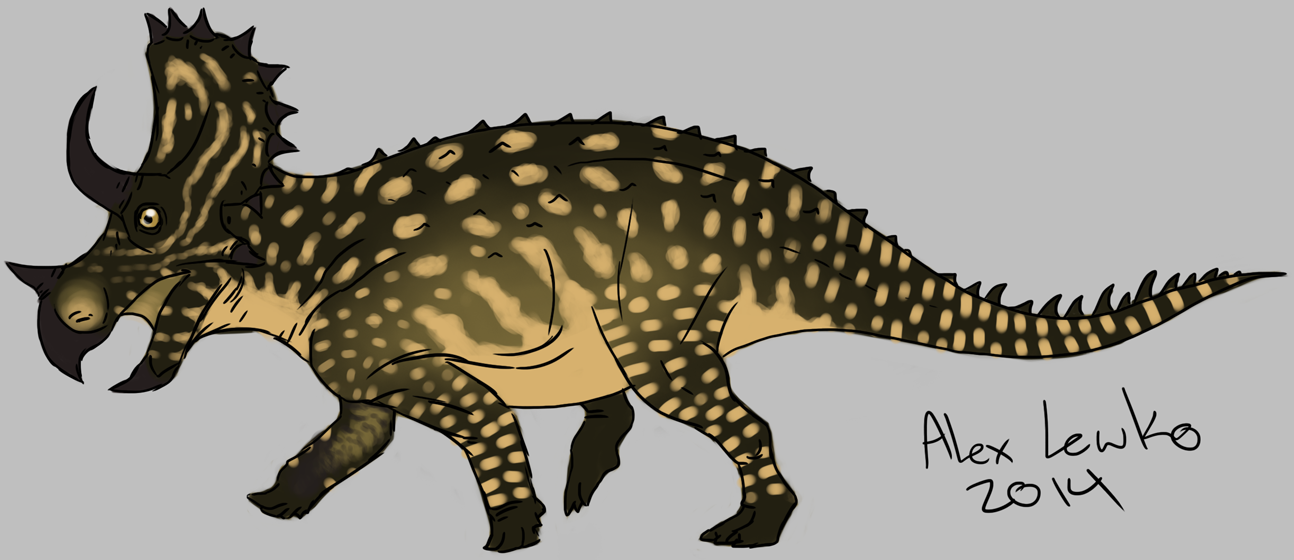 Juvenile Triceratops by Doc Lewko