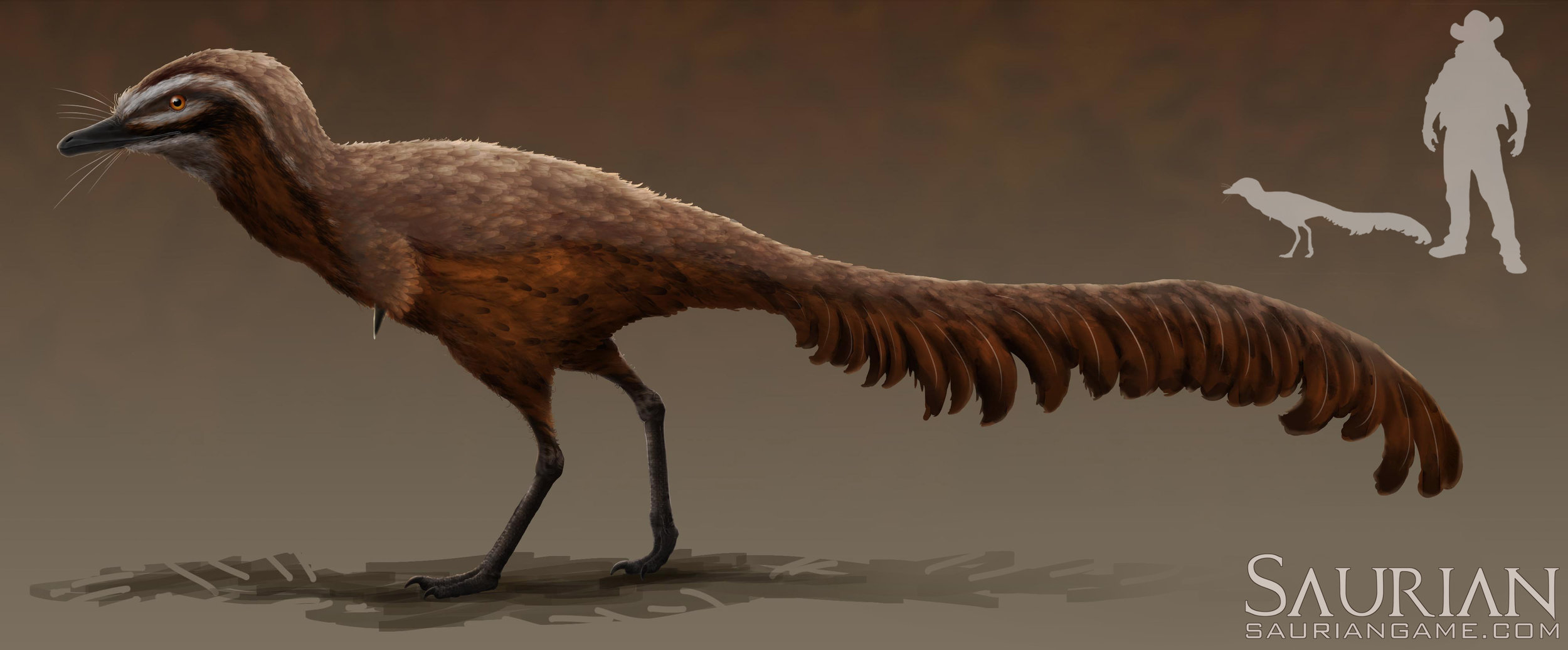 Alvarezsaurid to scale. Concept by Chris Masna and RJ Palmer