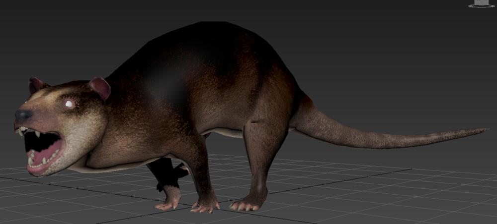 Didelphodon.png