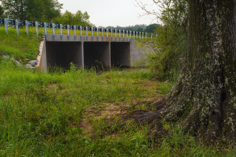 Doss Bridge Upstream web.jpg