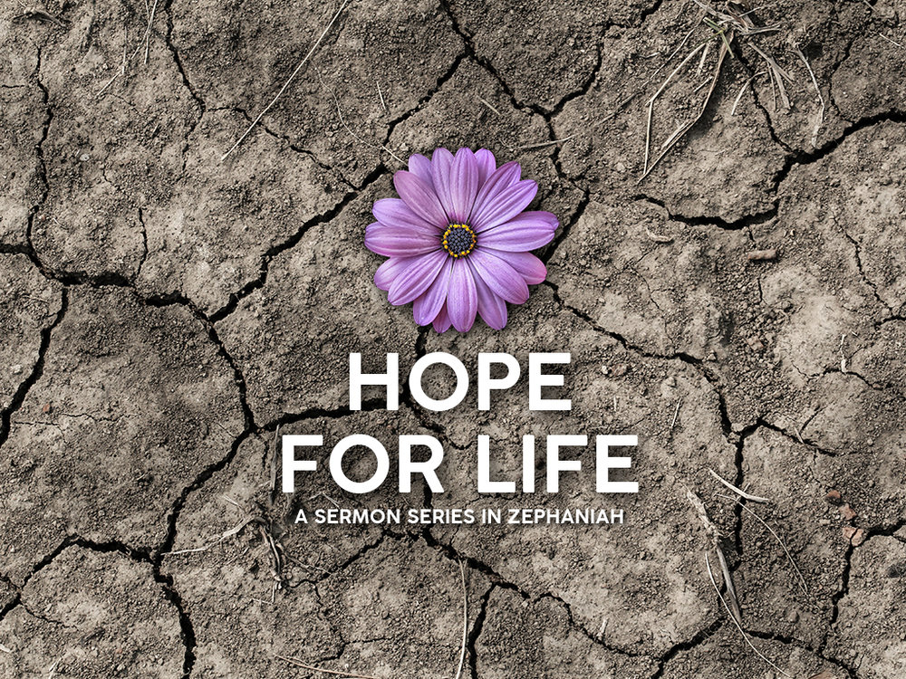 Hope For Life Title V2.jpg