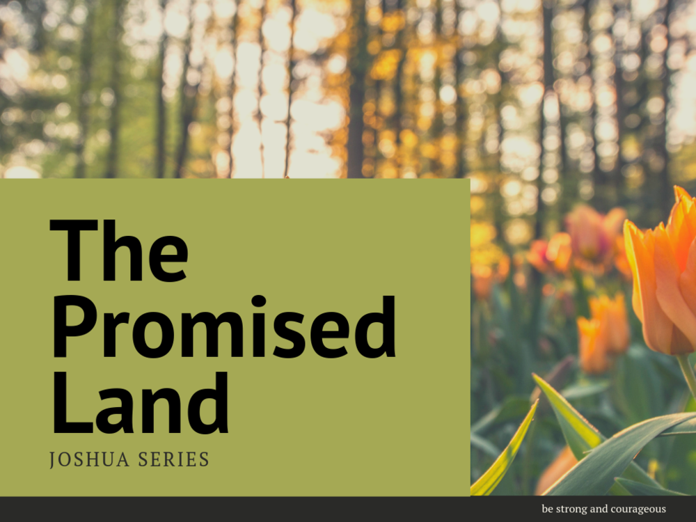 Promised land (2).png