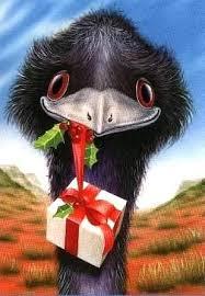 emu for web.jpg