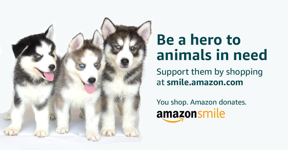Your shopping makes a difference. Do your regular Amazon shopping at   smile.amazon.com/ch/46-4183063  and Amazon donates to Wagging Tails Rescue.