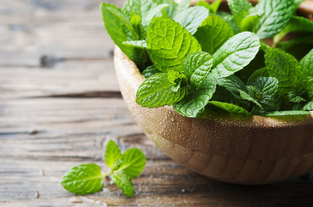 1. Mint - Good old mint is not a friend to insects. They absolutely hate the stuff!