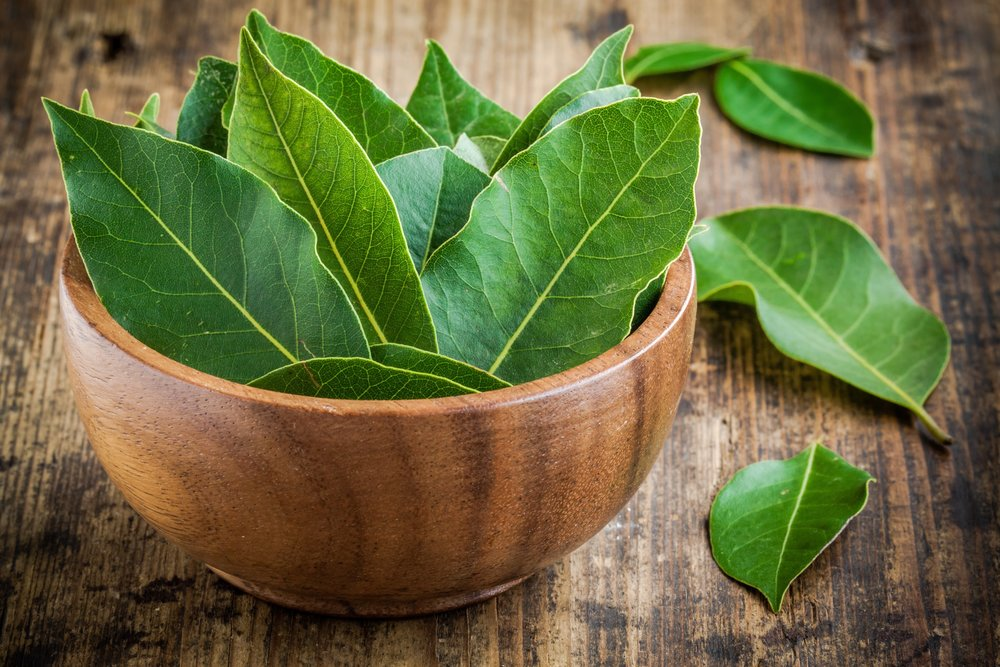 5. Bay leaves - Not only will these little babies repel mozzies, but they'll also put off flies, moths, mice and cockroaches!