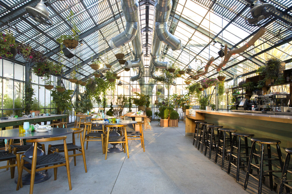 The Commissary in Los Angeles is said to have provided inspiration for The Fernery.
