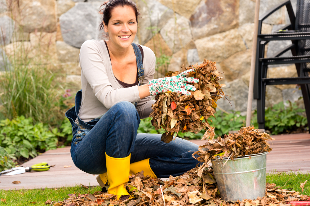 7. Garden - If your trees have lost their leaves for Winter, make sure they've been raked up prior to every open inspection.