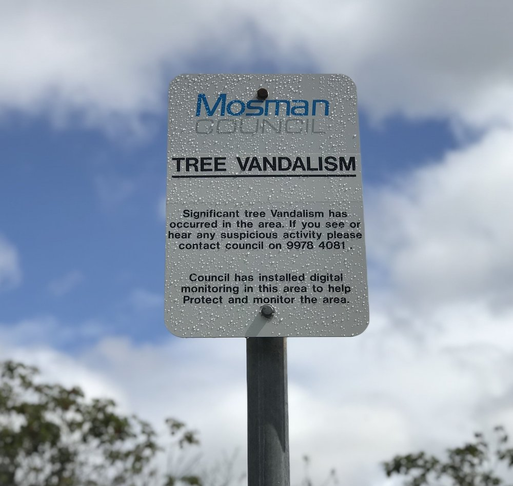 One of many signs placed on Bay St by Mosman Council.