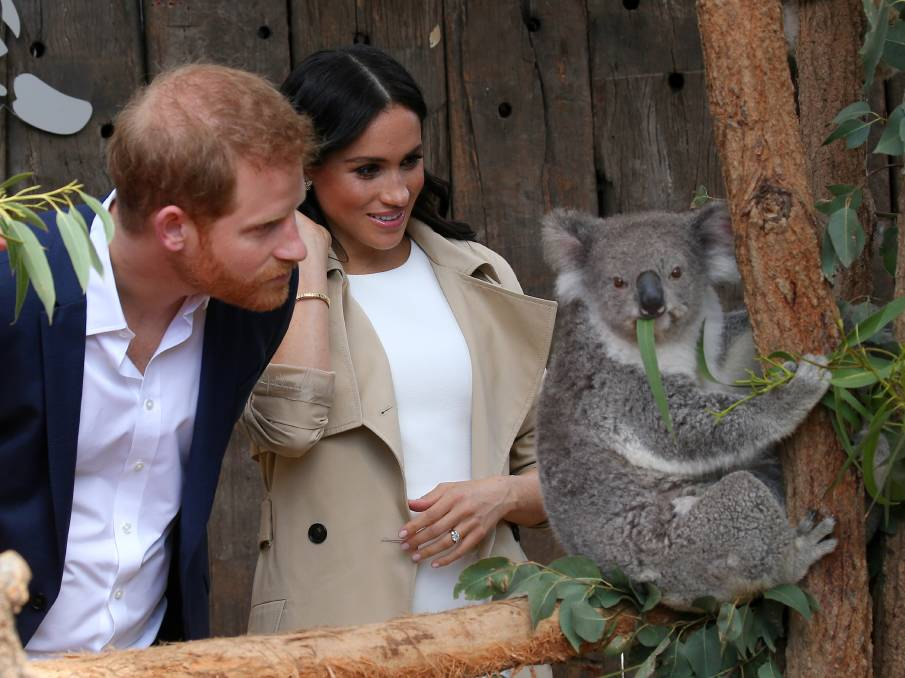 Harry and Meghan met their namesakes at Taronga Zoo today!
